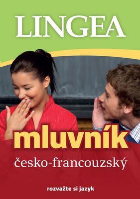 Obrázok Česko-francouzský mluvník