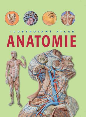 Obrázok Anatomie Ilustrovaný atlas