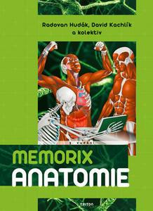 Obrázok Memorix anatomie