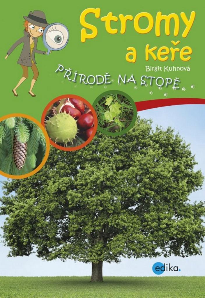 Stromy a keře - Brigit Kuhnová