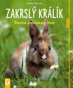 Obrázok Zakrslý králík