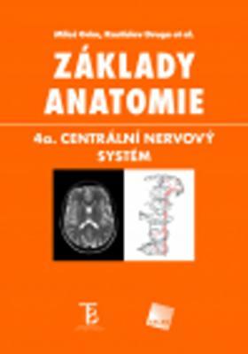 Obrázok Základy anatomie 4
