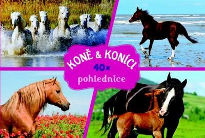 Obrázok Koně a koníci 40x pohlednice