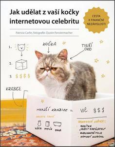 Obrázok Jak udělat z vaší kočky internetovou celebritu