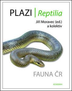 Obrázok Plazi/ Reptilia