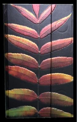 Obrázok Zápisník s magnetickou klopou 100x180 mm černý s listy