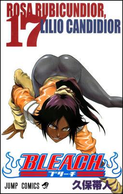 Obrázok Bleach 17