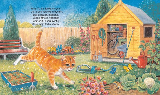 holky mokré tesné mačička
