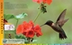 Obrázok Encyklopédia živej prírody