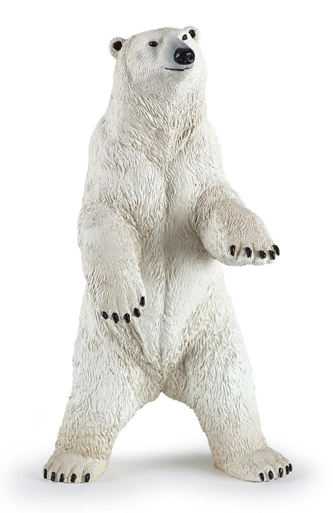 Výsledek obrázku pro lední medvěd eskymák