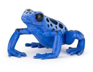 Obrázok Žába modrá