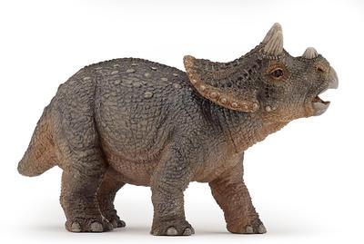 Obrázok Triceratops mládě