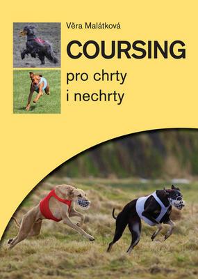 Obrázok Coursing