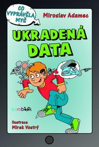 Obrázok Ukradená data
