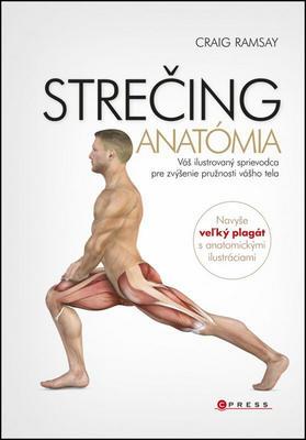 Obrázok STREČING Anatómia