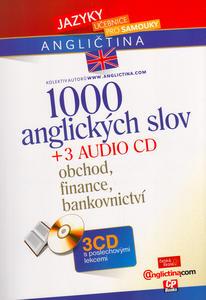Obrázok 1000 anglických slov + 3 CD