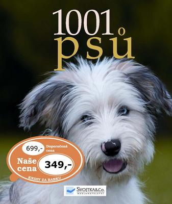 Obrázok 1001 psů