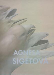 Obrázok Agnesa Sigetová
