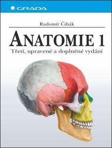 Obrázok Anatomie 1.