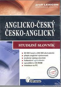 Obrázok Anglický studijní slovník