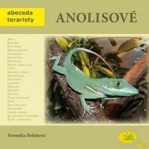 Obrázok Anolisové
