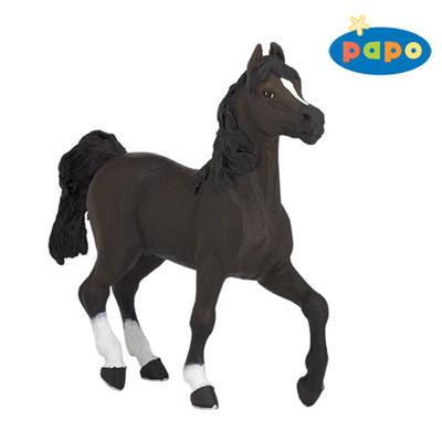 Obrázok Arabský kůň