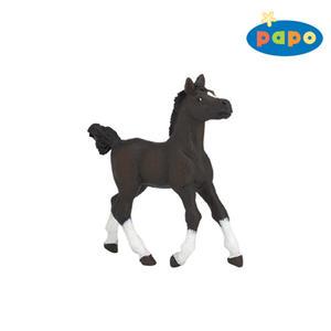 Obrázok Arabský kůň hříbě