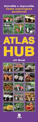 Obrázok Atlas hub