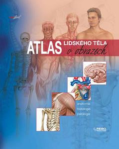 Obrázok Atlas lidského těla v obrazech