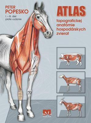 Obrázok Atlas topografickej anatómie hospodárskych zvierat I. - III. diel