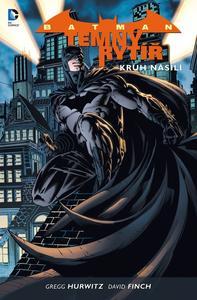 Obrázok Batman Temný rytíř 2 Kruh násilí