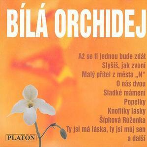 Obrázok Bílá orchidej
