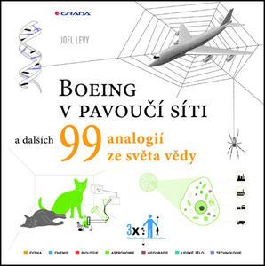 Obrázok Boeing v pavoučí síti