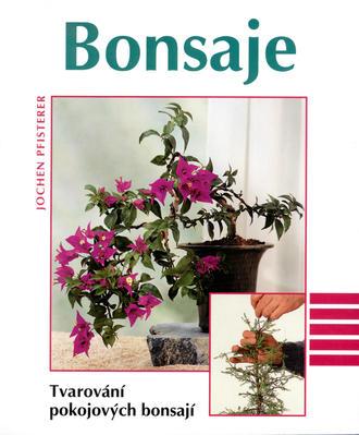 Obrázok Bonsaje Tvarování pokojových bonsají