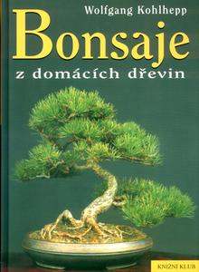 Obrázok Bonsaje z domácích dřevin