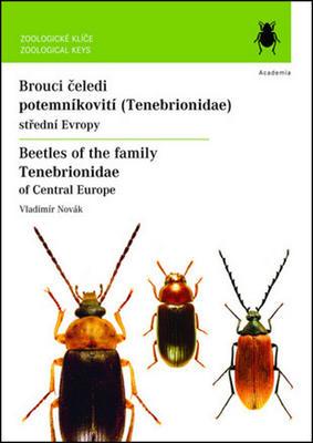 Obrázok Brouci čeledi potemníkovití (Tenebrionidae)