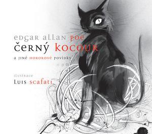 Obrázok Černý kocour