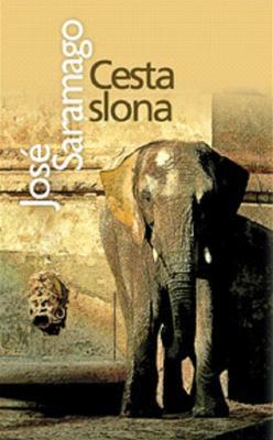 Obrázok Cesta slona