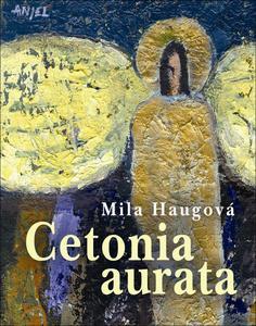 Obrázok Cetonia aurata