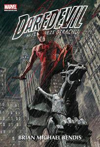 Obrázok Daredevil 2