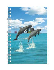 Obrázok Deníček Úžaska Delfíni