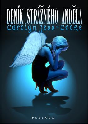 Obrázok Deník strážného anděla