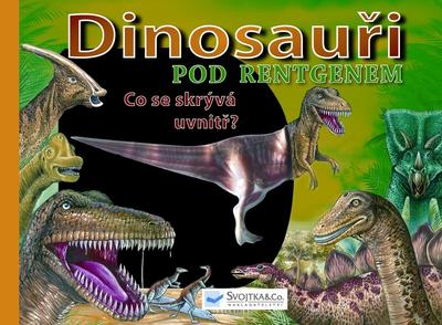 Obrázok Dinosauři pod rentgenem