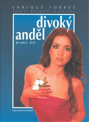 Obrázok Divoký anděl (druhý díl)