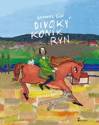 Obrázok Divoký koník Ryn