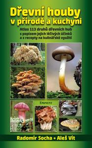 Obrázok Dřevní houby v přírodě a kuchyni