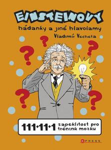 Obrázok Einsteinovy hádanky a jiné hlavolamy