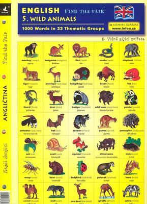 Obrázok English - Find the Pair 1. Wild