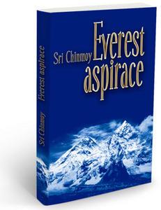 Obrázok Everest aspirace