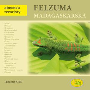 Obrázok Felzuma madagaskarská